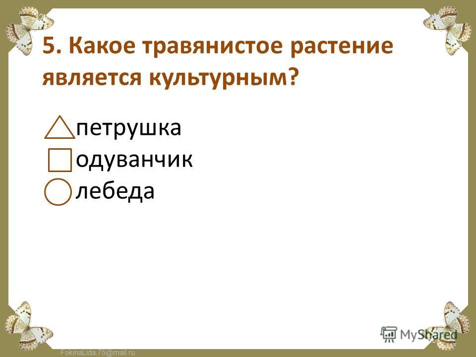 FokinaLida.75@mail.ru 5. Какое травянистое растение является культурным? петрушка одуванчик лебеда