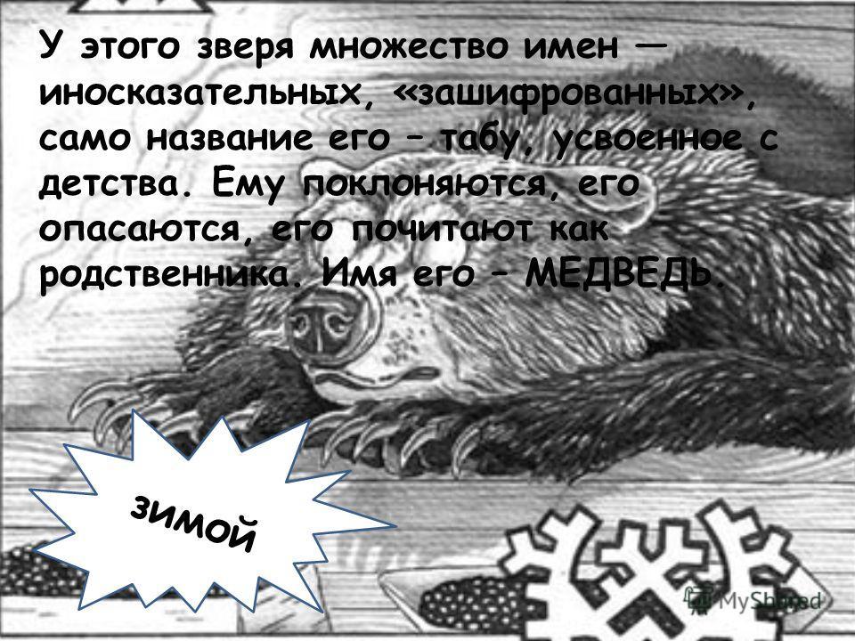 «Медвежий праздник» зимой