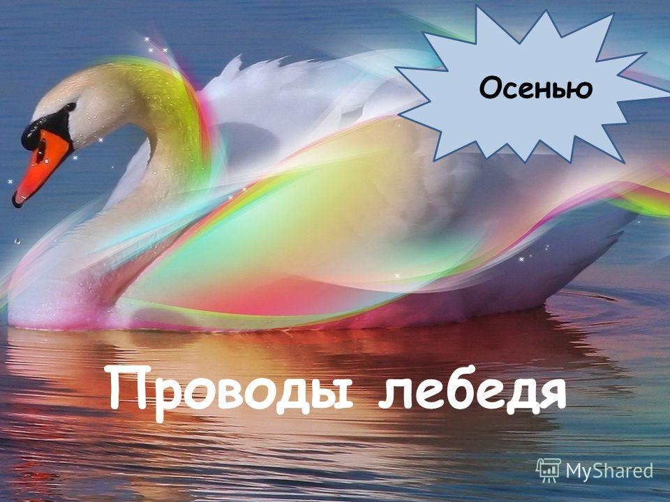 « Трясогузка – одна из самых распространенных птиц в Югре. Обитает она по берегам водоемов, и появляется именно ко времени ледокола. Вот и говорят в народе, будто «трясогузка хвостом лед разбивают». За то и кличут «ледоломкой»: «Трясогузка-ледоломка