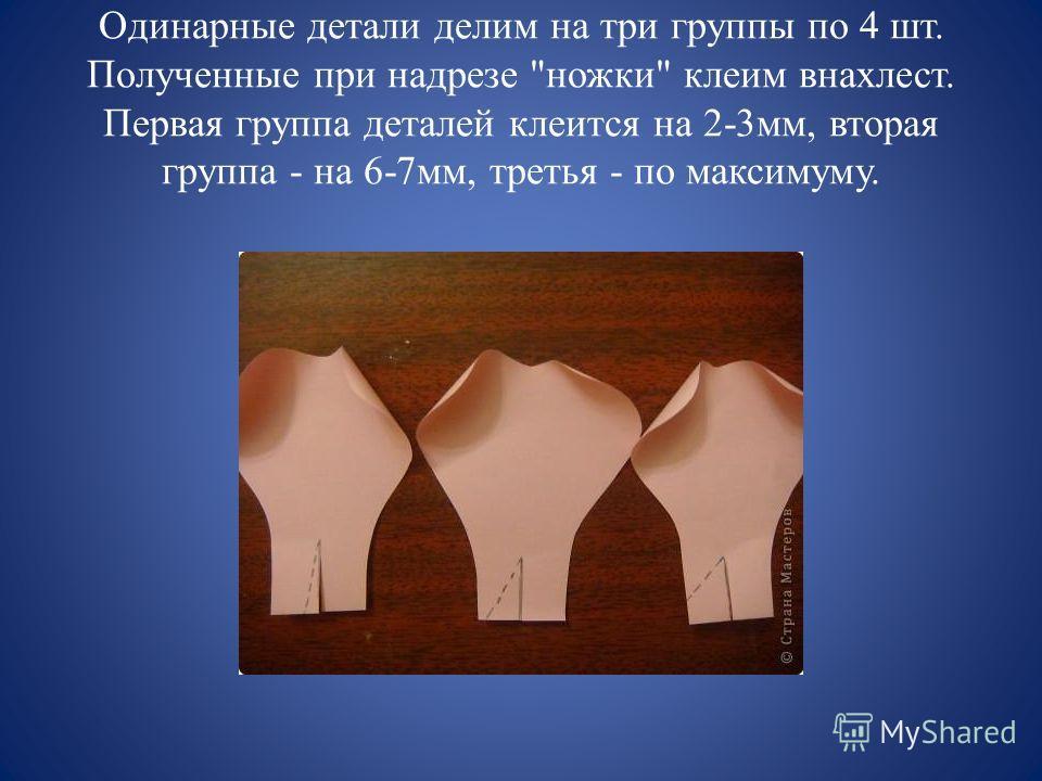 Одинарные детали делим на три группы по 4 шт. Полученные при надрезе ножки клеим внахлест. Первая группа деталей клеится на 2-3мм, вторая группа - на 6-7мм, третья - по максимуму.