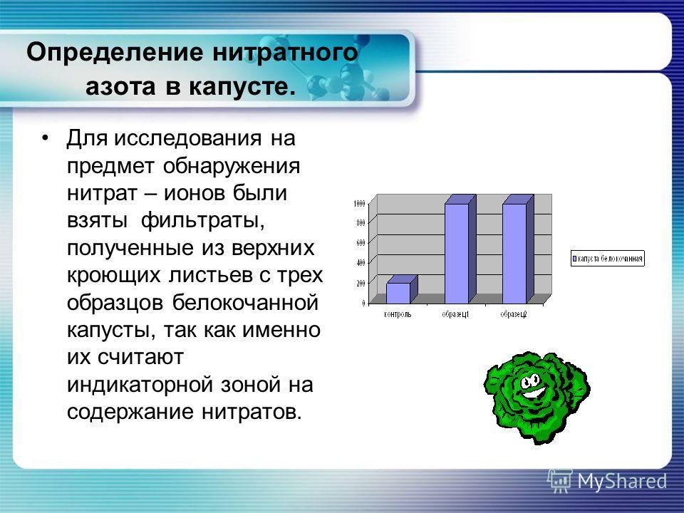 Определение нитратного азота в капусте. Для исследования на предмет обнаружения нитрат – ионов были взяты фильтраты, полученные из верхних кроющих листьев с трех образцов белокочанной капусты, так как именно их считают индикаторной зоной на содержани