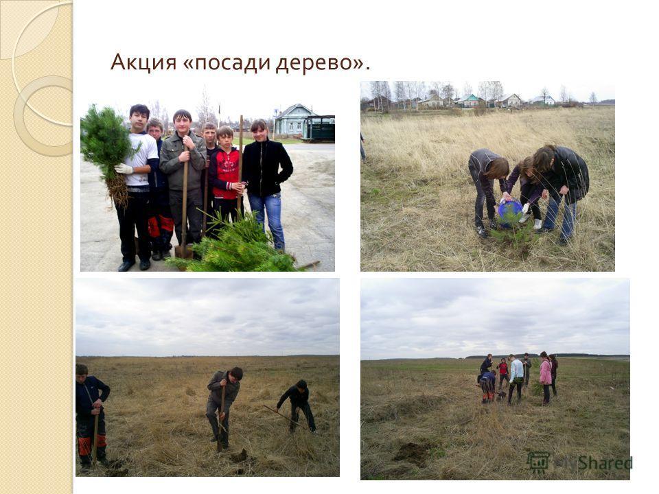 Акция « посади дерево ».