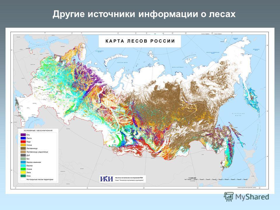 Другие источники информации о лесах