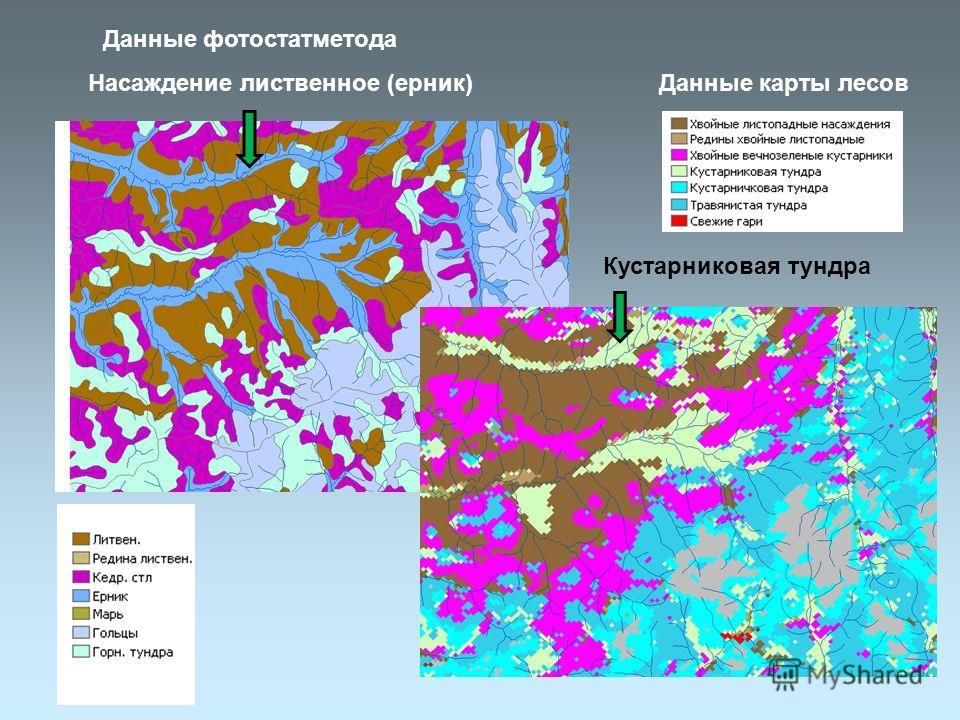 Данные фотостатметода Данные карты лесов Насаждение лиственное (ерник) Кустарниковая тундра