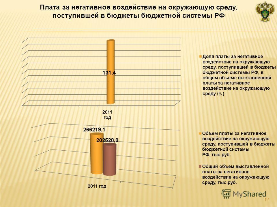 Плата за негативное воздействие на окружающую среду, поступившей в бюджеты бюджетной системы РФ 17