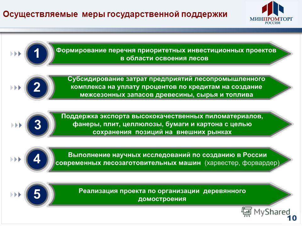 10 Осуществляемые меры государственной поддержки