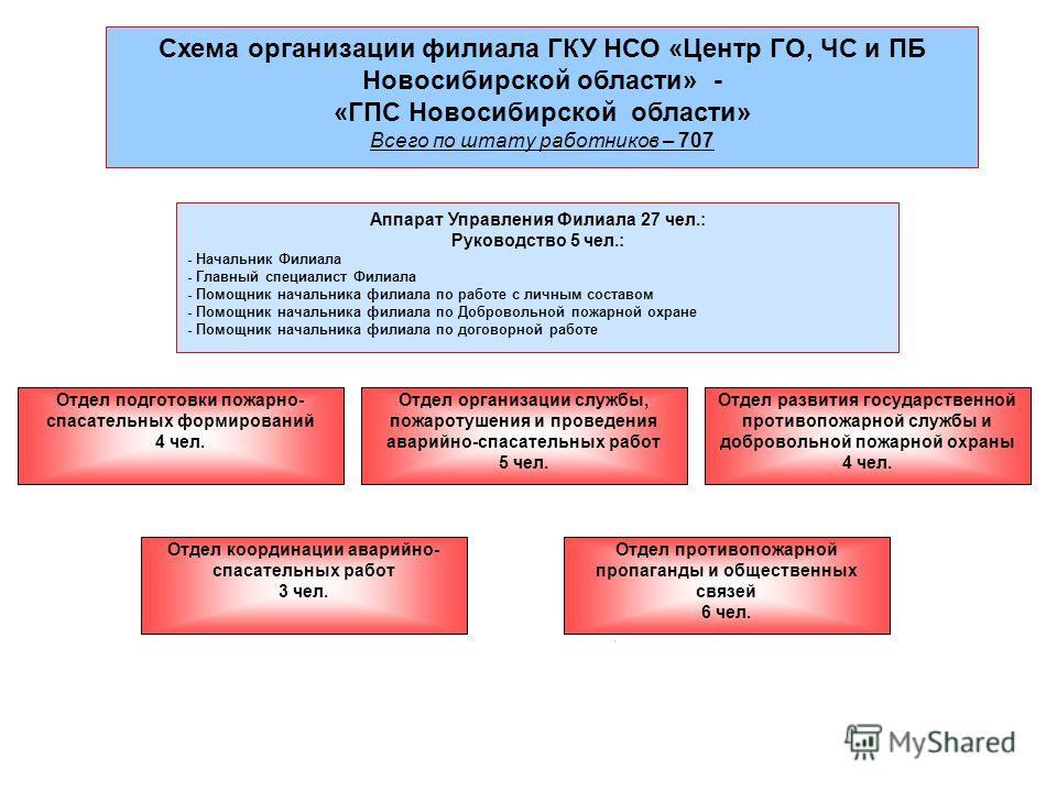 Схема организации филиала ГКУ