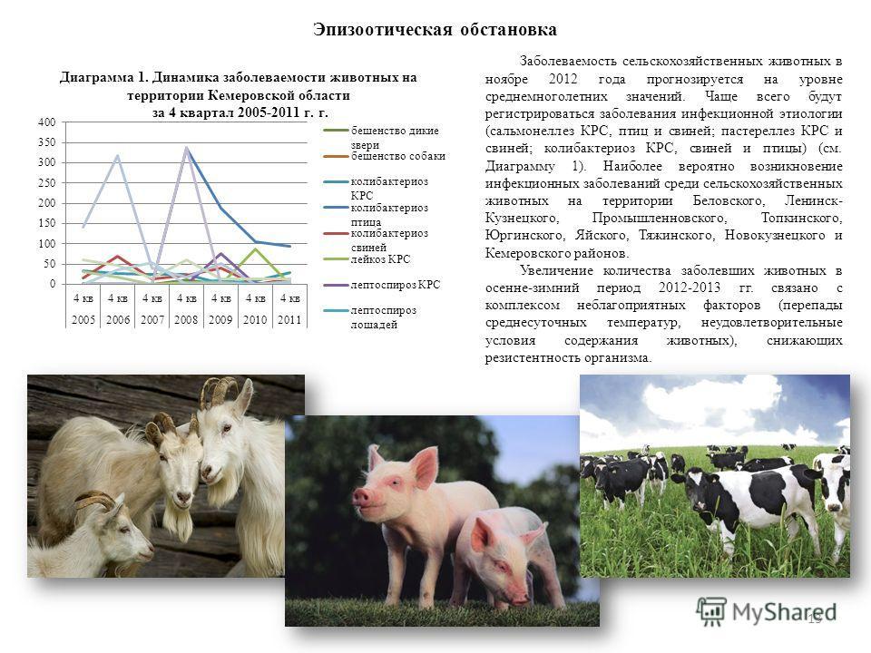 Эпизоотическая обстановка 13 Заболеваемость сельскохозяйственных животных в ноябре 2012 года прогнозируется на уровне среднемноголетних значений. Чаще всего будут регистрироваться заболевания инфекционной этиологии (сальмонеллез КРС, птиц и свиней; п
