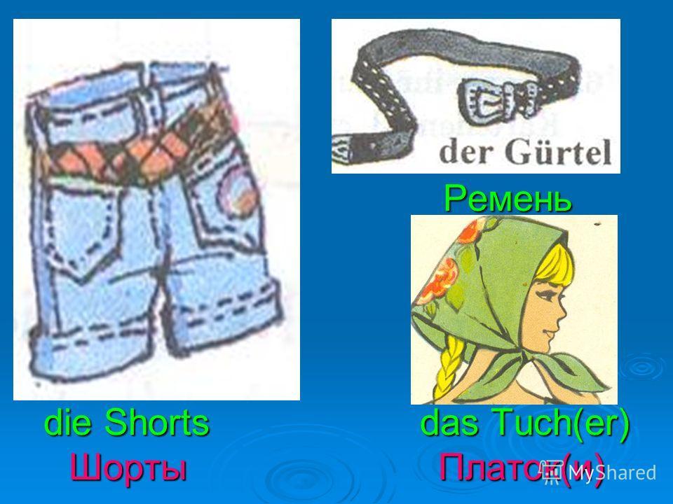 der Pullover () das T-Shirt(e) Свитер(ы) Футболка(и)