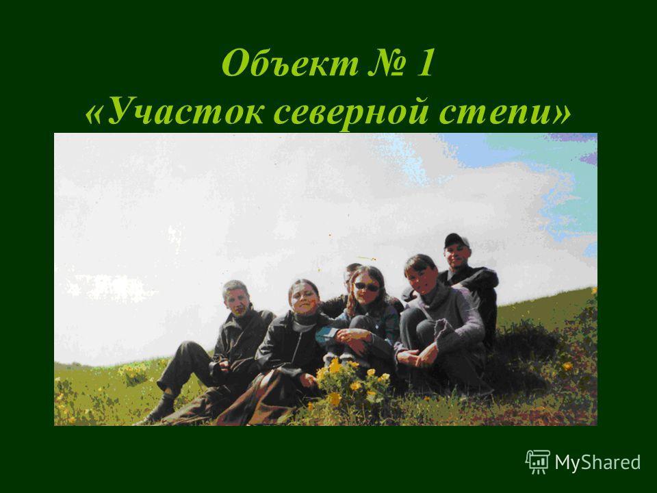 План окрестностей села Булгаково