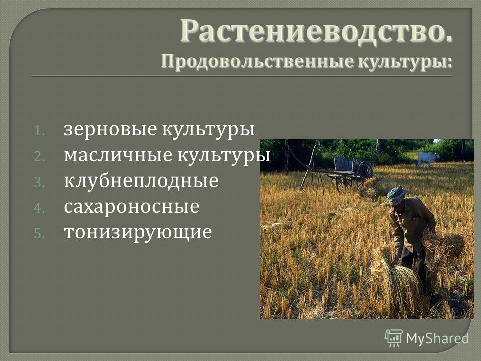 1. зерновые культуры 2. масличные культуры 3. клубнеплодные 4. сахароносные 5. тонизирующие