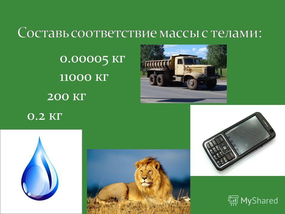 0.00005 кг 11000 кг 200 кг 0.2 кг