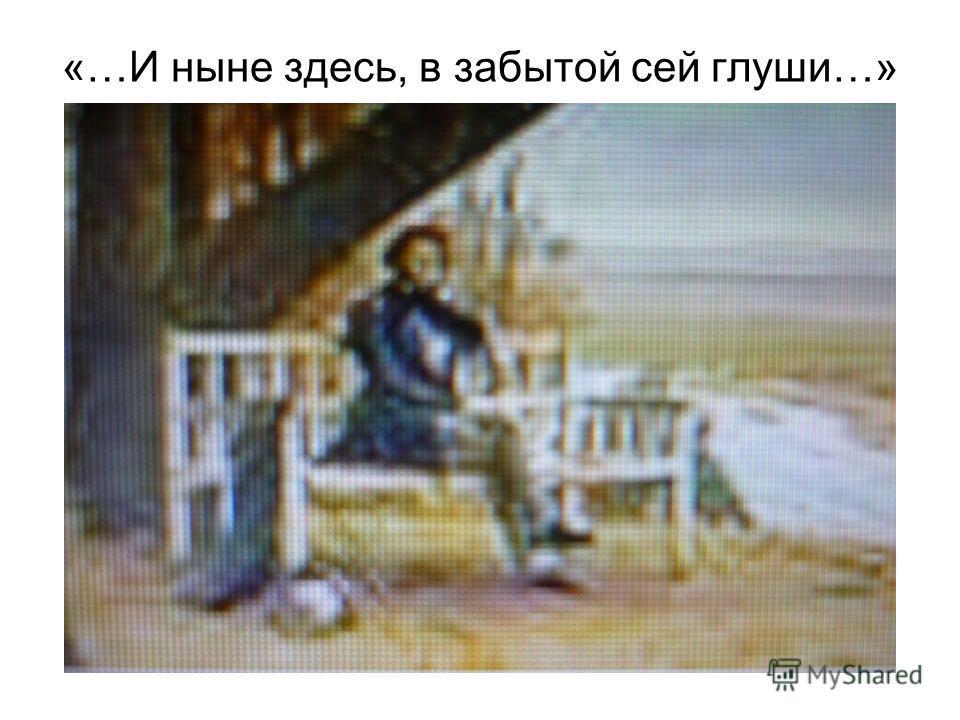 «…И ныне здесь, в забытой сей глуши…»