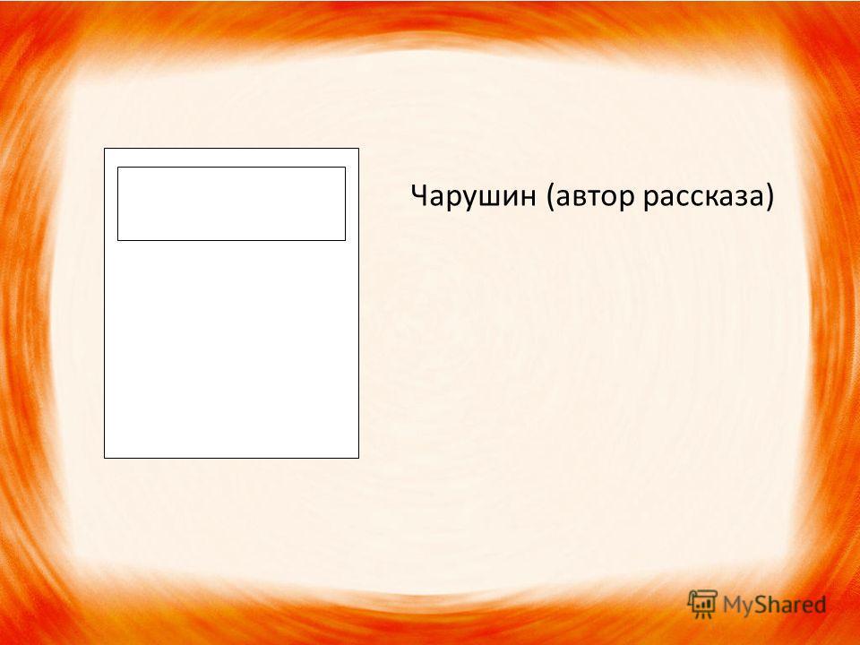 Чарушин (автор рассказа)