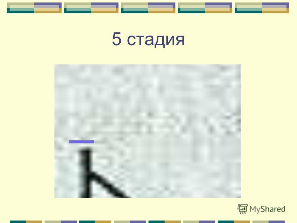 5 стадия
