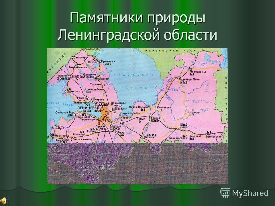 Памятники природы Ленинградской области