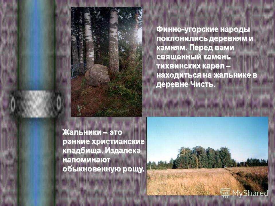 Финно-угорские народы поклонились деревням и камням. Перед вами священный камень тихвинских карел – находиться на жальнике в деревне Чисть. Жальники – это ранние христианские кладбища. Издалека напоминают обыкновенную рощу.
