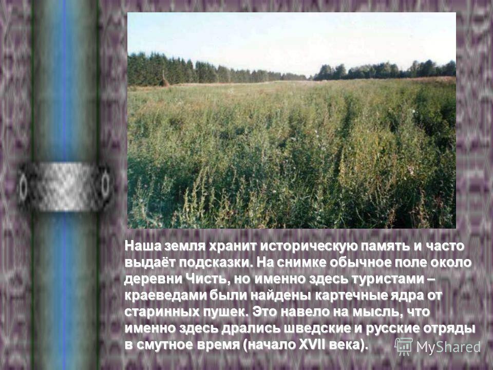 Наша земля хранит историческую память и часто выдаёт подсказки. На снимке обычное поле около деревни Чисть, но именно здесь туристами – краеведами были найдены картечные ядра от старинных пушек. Это навело на мысль, что именно здесь дрались шведские