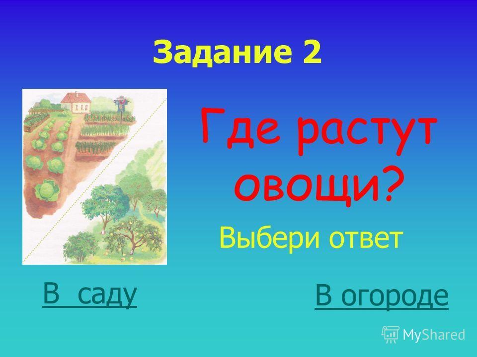 Задание 2 Где растут овощи? Выбери ответ В саду В огороде