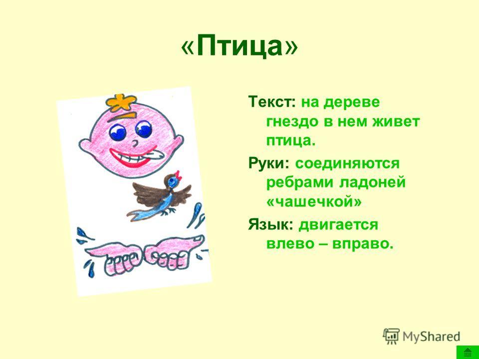 «Птица» Текст: на дереве гнездо в нем живет птица. Руки: соединяются ребрами ладоней «чашечкой» Язык: двигается влево – вправо.