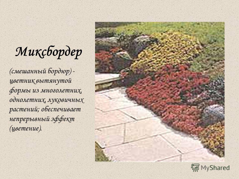 Миксбордер (смешанный бордюр) - цветник вытянутой формы из многолетних, однолетних, луковичных растений; обеспечивает непрерывный эффект (цветение).