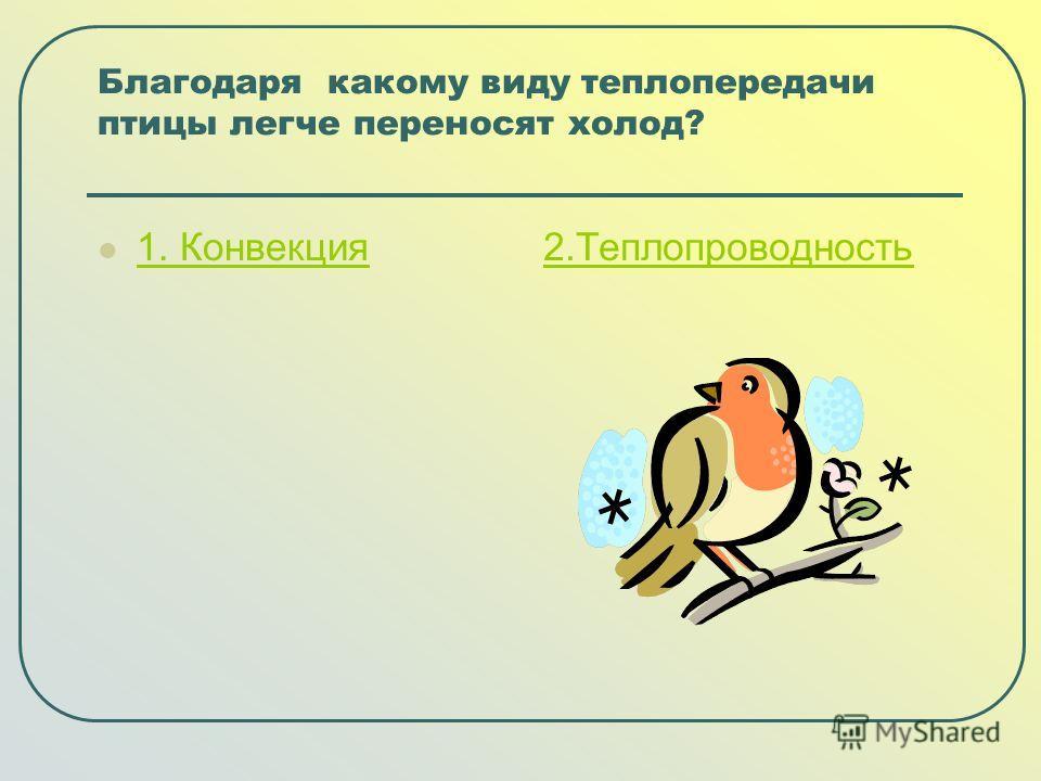 Благодаря какому виду теплопередачи птицы легче переносят холод? 1. Конвекция 1. Конвекция2.Теплопроводность