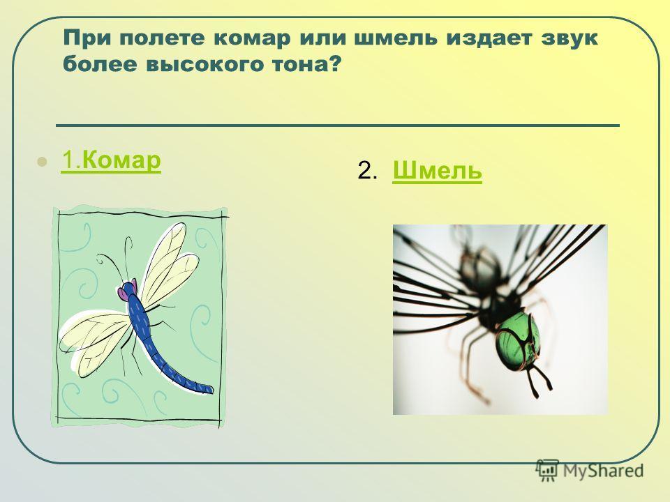 При полете комар или шмель издает звук более высокого тона? 1.Комар 1.Комар 2. ШмельШмель
