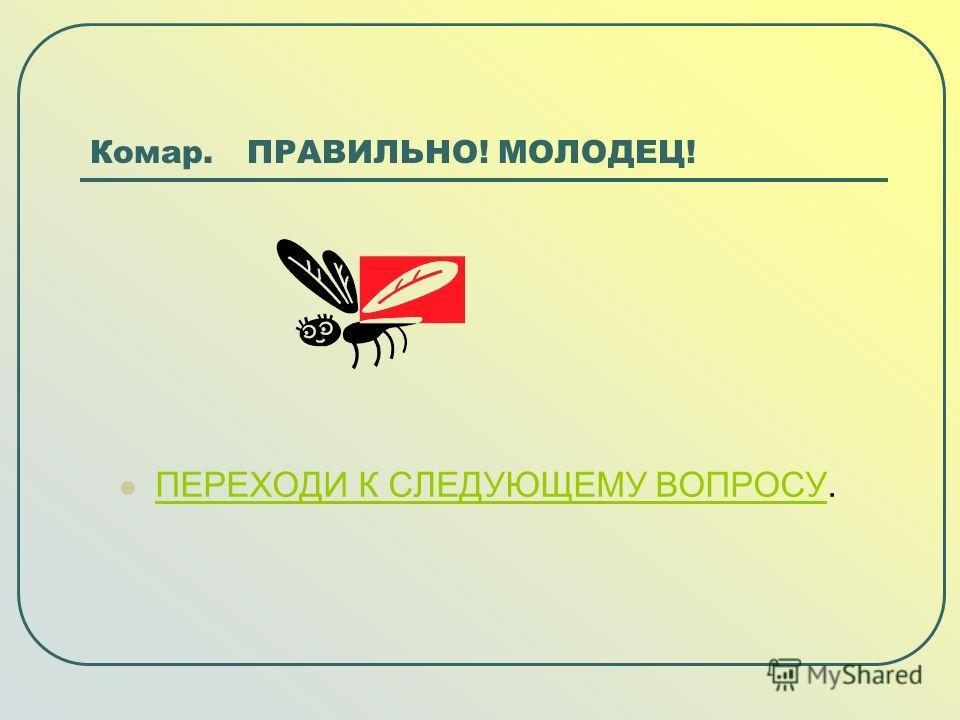 Комар. ПРАВИЛЬНО! МОЛОДЕЦ! ПЕРЕХОДИ К СЛЕДУЮЩЕМУ ВОПРОСУ. ПЕРЕХОДИ К СЛЕДУЮЩЕМУ ВОПРОСУ