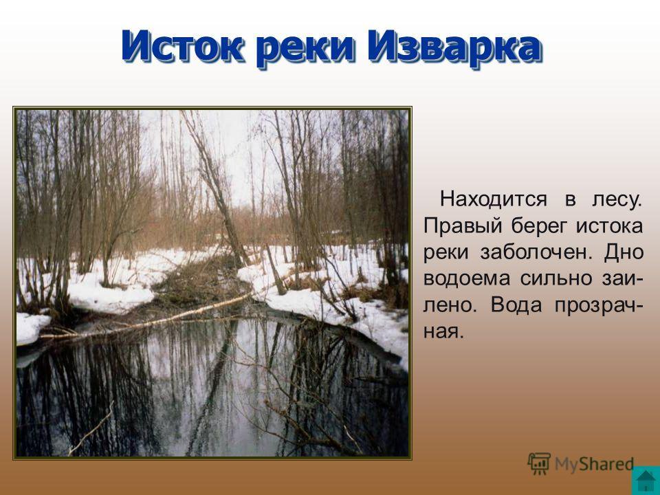 Находится в лесу. Правый берег истока реки заболочен. Дно водоема сильно заи- лено. Вода прозрач- ная. Исток реки Изварка