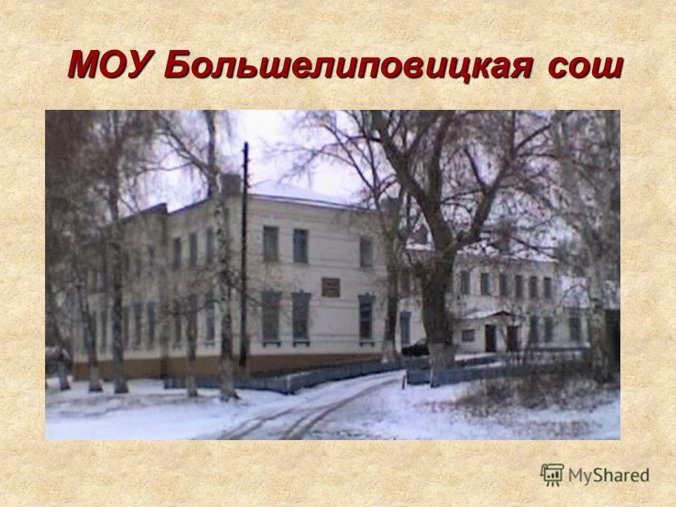 МОУ Большелиповицкая сош