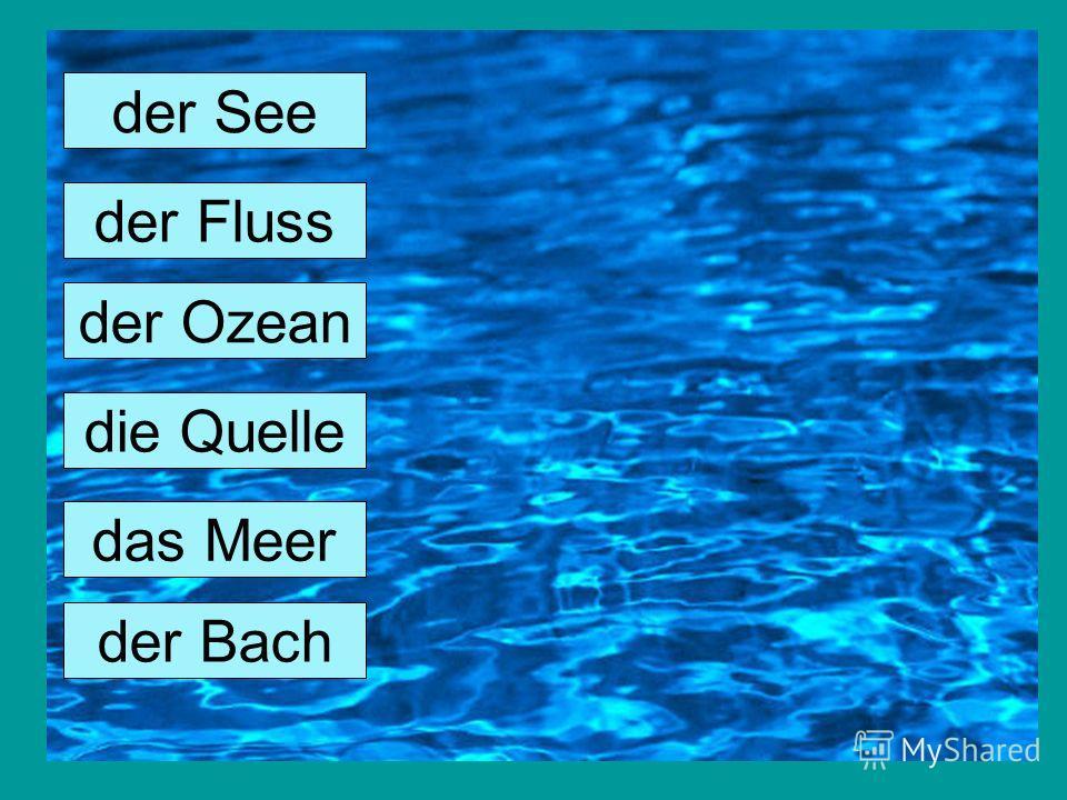 der See der Fluss der Ozean die Quelle das Meer der Bach