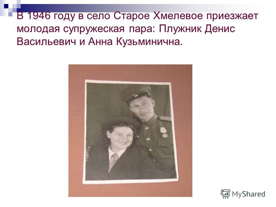 В 1946 году в село Старое Хмелевое приезжает молодая супружеская пара: Плужник Денис Васильевич и Анна Кузьминична.