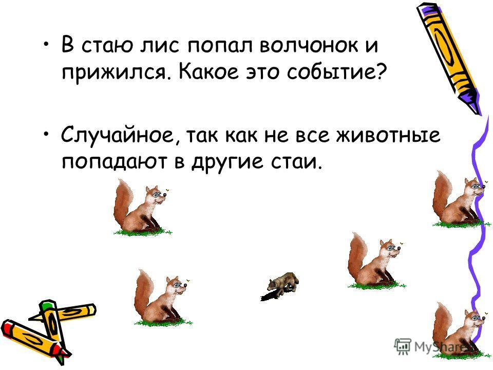 В стаю лис попал волчонок и прижился. Какое это событие? Случайное, так как не все животные попадают в другие стаи.