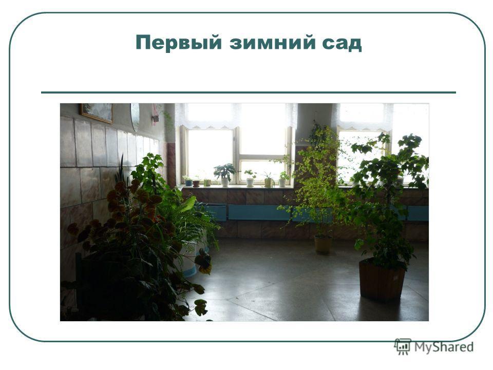 Первый зимний сад