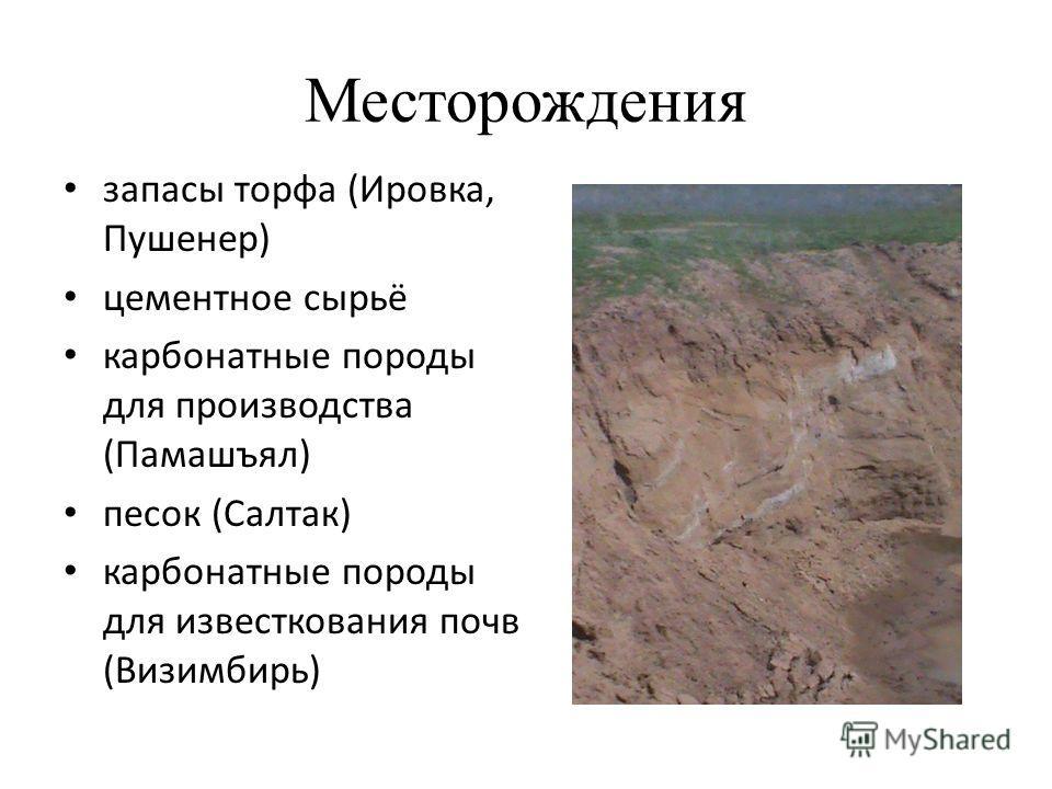 Месторождения запасы торфа (Ировка, Пушенер) цементное сырьё карбонатные породы для производства (Памашъял) песок (Салтак) карбонатные породы для известкования почв (Визимбирь)