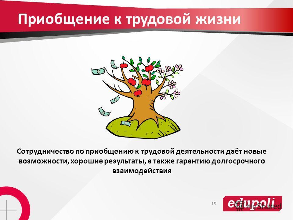 Приобщение к трудовой жизни Сотрудничество по приобщению к трудовой деятельности даёт новые возможности, хорошие результаты, а также гарантию долгосрочного взаимодействия 15