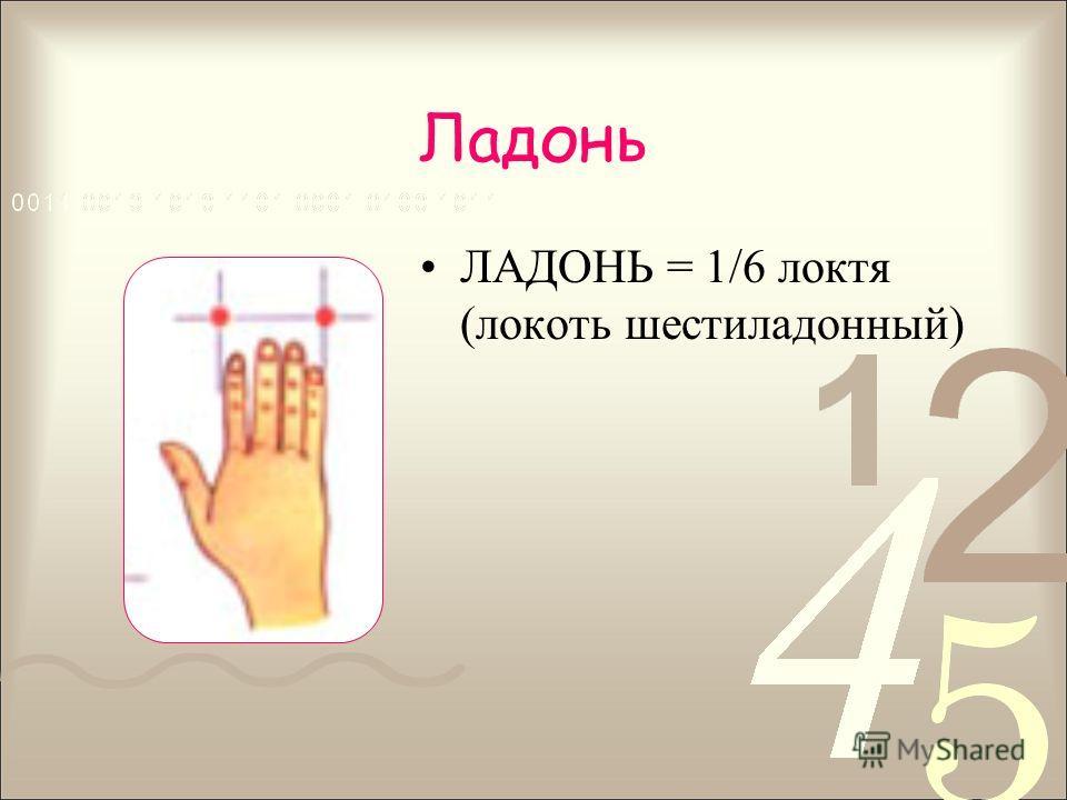 Ладонь ЛАДОНЬ = 1/6 локтя (локоть шестиладонный)