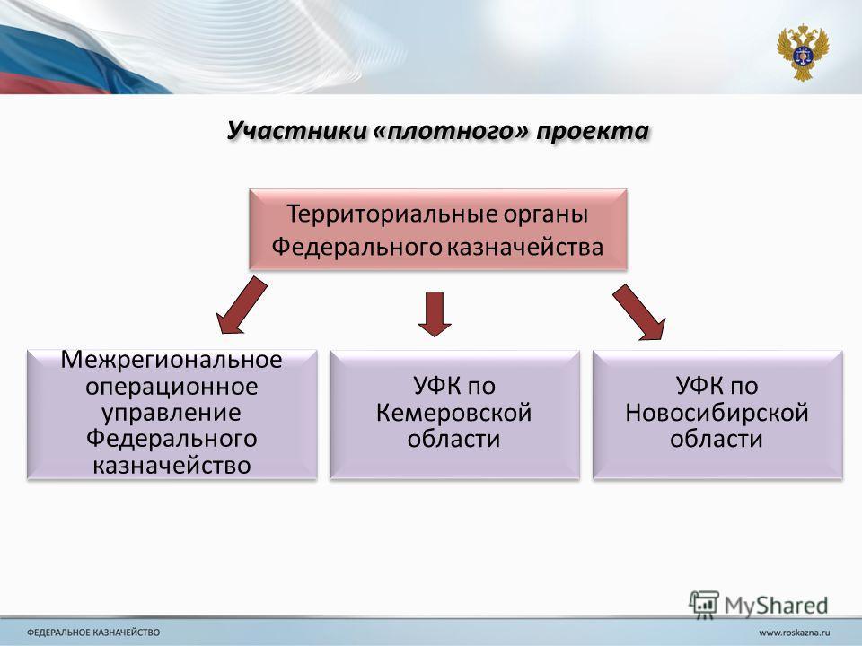 Участники «плотного» проекта Территориальные органы Федерального казначейства УФК по Новосибирской области Межрегиональное операционное управление Федерального казначейство УФК по Кемеровской области