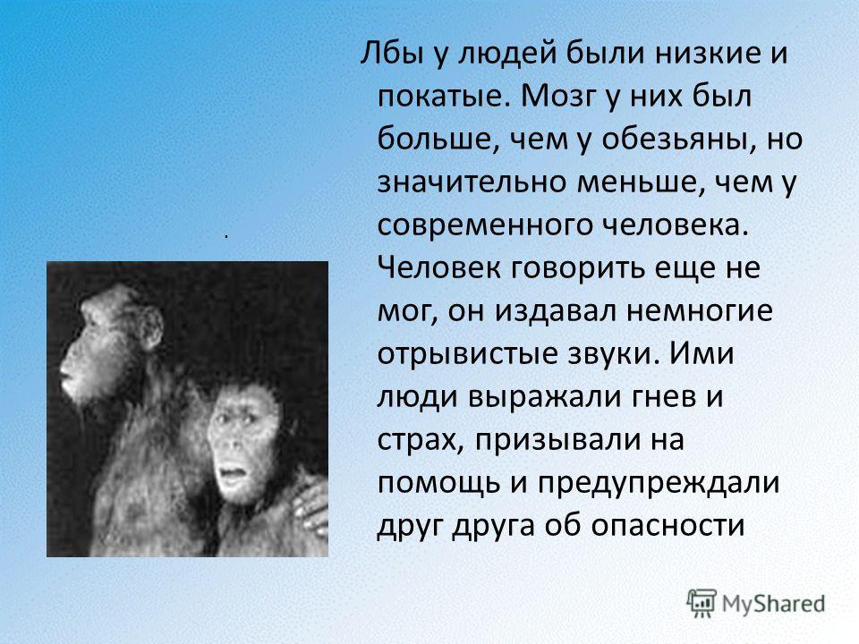 . Лбы у людей были низкие и покатые. Мозг у них был больше, чем у обезьяны, но значительно меньше, чем у современного человека. Человек говорить еще не мог, он издавал немногие отрывистые звуки. Ими люди выражали гнев и страх, призывали на помощь и п