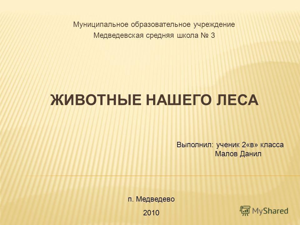 ЖИВОТНЫЕ НАШЕГО ЛЕСА Муниципальное образовательное учреждение Медведевская средняя школа 3 Выполнил: ученик 2«в» класса Малов Данил п. Медведево 2010
