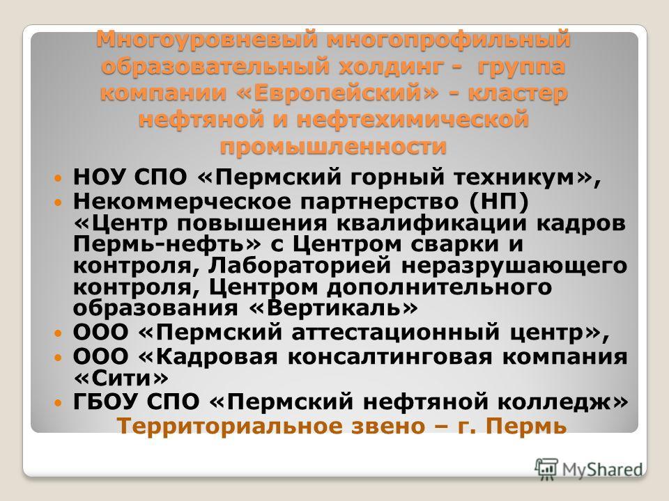 Многоуровневый многопрофильный образовательный холдинг - группа компании «Европейский» - кластер нефтяной и нефтехимической промышленности НОУ СПО «Пермский горный техникум», Некоммерческое партнерство (НП) «Центр повышения квалификации кадров Пермь-