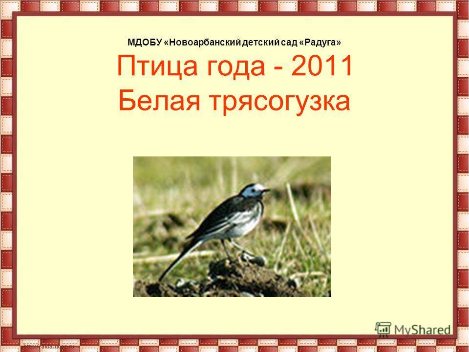 МДОБУ «Новоарбанский детский сад «Радуга» Птица года - 2011 Белая трясогузка