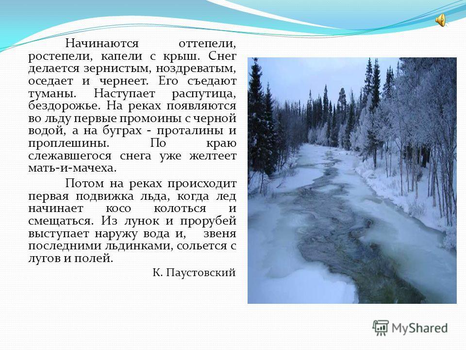Начинаются оттепели, ростепели, капели с крыш. Снег делается зернистым, ноздреватым, оседает и чернеет. Его съедают туманы. Наступает распутица, бездорожье. На реках появляются во льду первые промоины с черной водой, а на буграх - проталины и проплеш