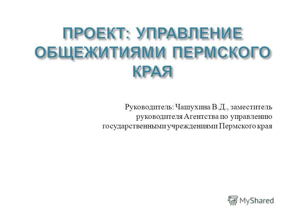 Руководитель : Чащухина В. Д., заместитель руководителя Агентства по управлению государственными учреждениями Пермского края