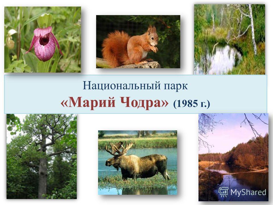 Национальный парк «Марий Чодра» (1985 г.)