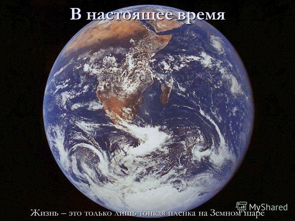 52 В настоящее время Жизнь – это только лишь тонкая пленка на Земном шаре