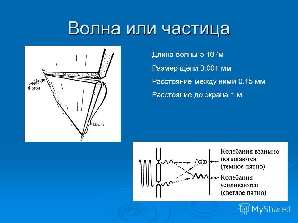 Волна или частица Длина волны 5·10 -7 м Размер щели 0.001 мм Расстояние между ними 0.15 мм Расстояние до экрана 1 м