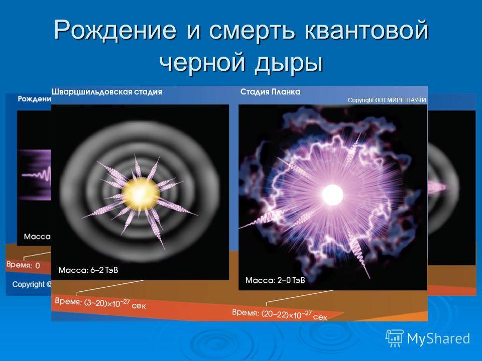 Рождение и смерть квантовой черной дыры