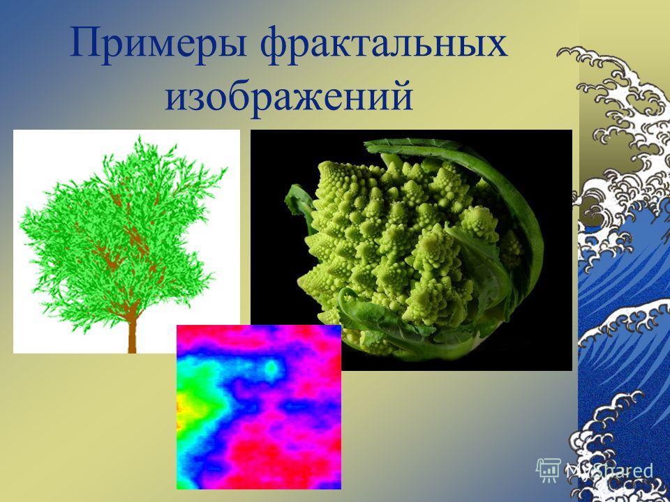 Примеры фрактальных изображений