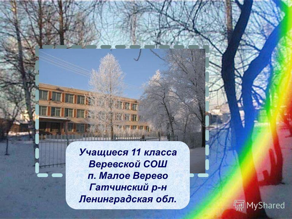 Учащиеся 11 класса Веревской СОШ п. Малое Верево Гатчинский р-н Ленинградская обл.